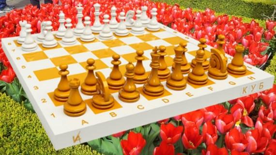 настройка на энергию игры Шахматы