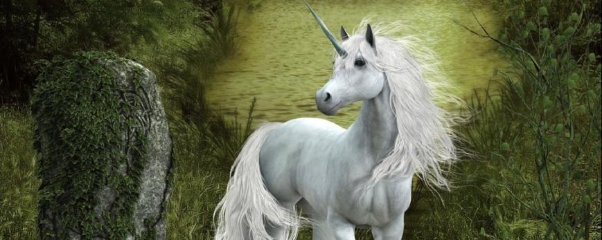 Единорог, легенда или реальность?