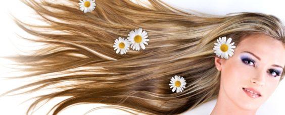 Сила волос
