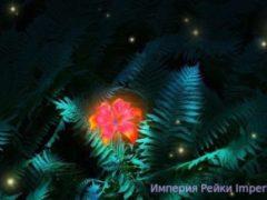 Перунов Цвет