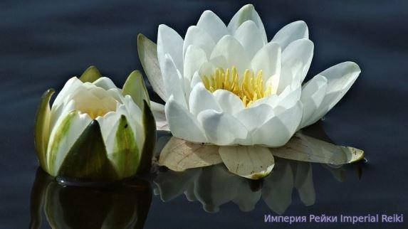 Медитация рейки гармонизация